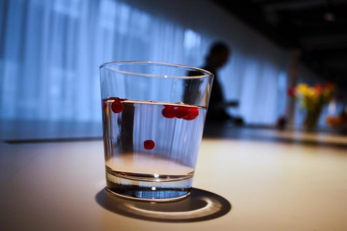 Agua con arándanos en Suecia <br> Foto: Israel Úbeda / sweetsweden.com