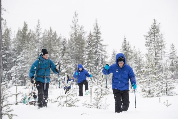 Con raquetas de nieve por el bosque de Laponia - Foto: Ted Logardt / visitskellefteå.se