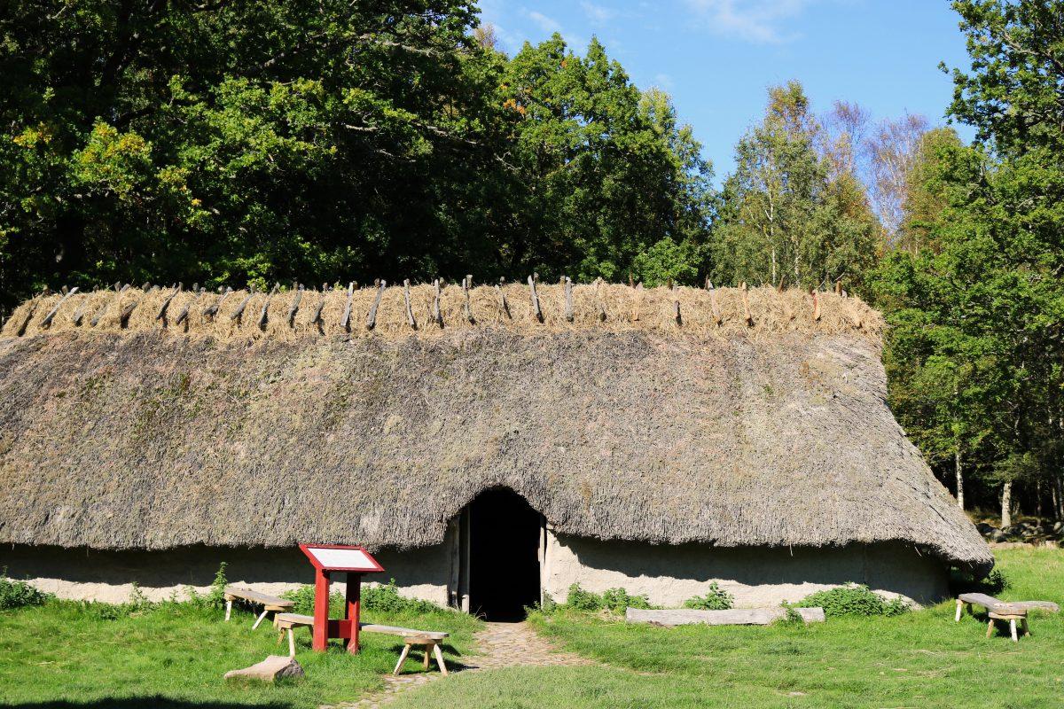 Granjas representación de las de la Edad de Bronce en Vitlycke, Suecia <br> Foto: Israel Ubeda / sweetsweden.com
