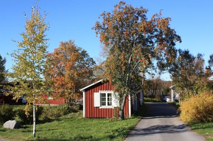 Casita con árbol en Gammelstad  <br> Foto: Israel Ubeda / sweetsweden.com