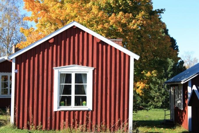 Stuga y árbol con colores otoñales en Gammelstad <br> Foto: Israel Ubeda / sweetsweden.com