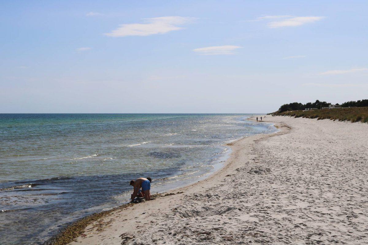 Playa en Ljunghusen <br> Foto: Israel Úbeda / sweetsweden.com