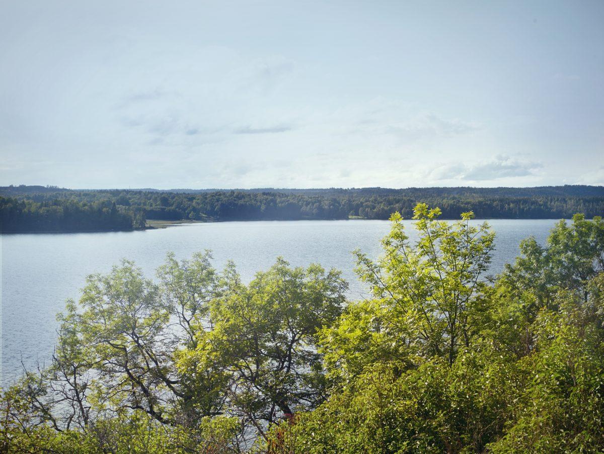 El paisaje natural idílico de la isla Henriksholm en Dalsland <br> Foto: Maja Flink