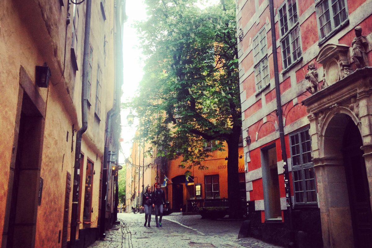Gamla Stan's own chestnut tree <br /> Photo: Israel Ubeda / sweetsweden.com