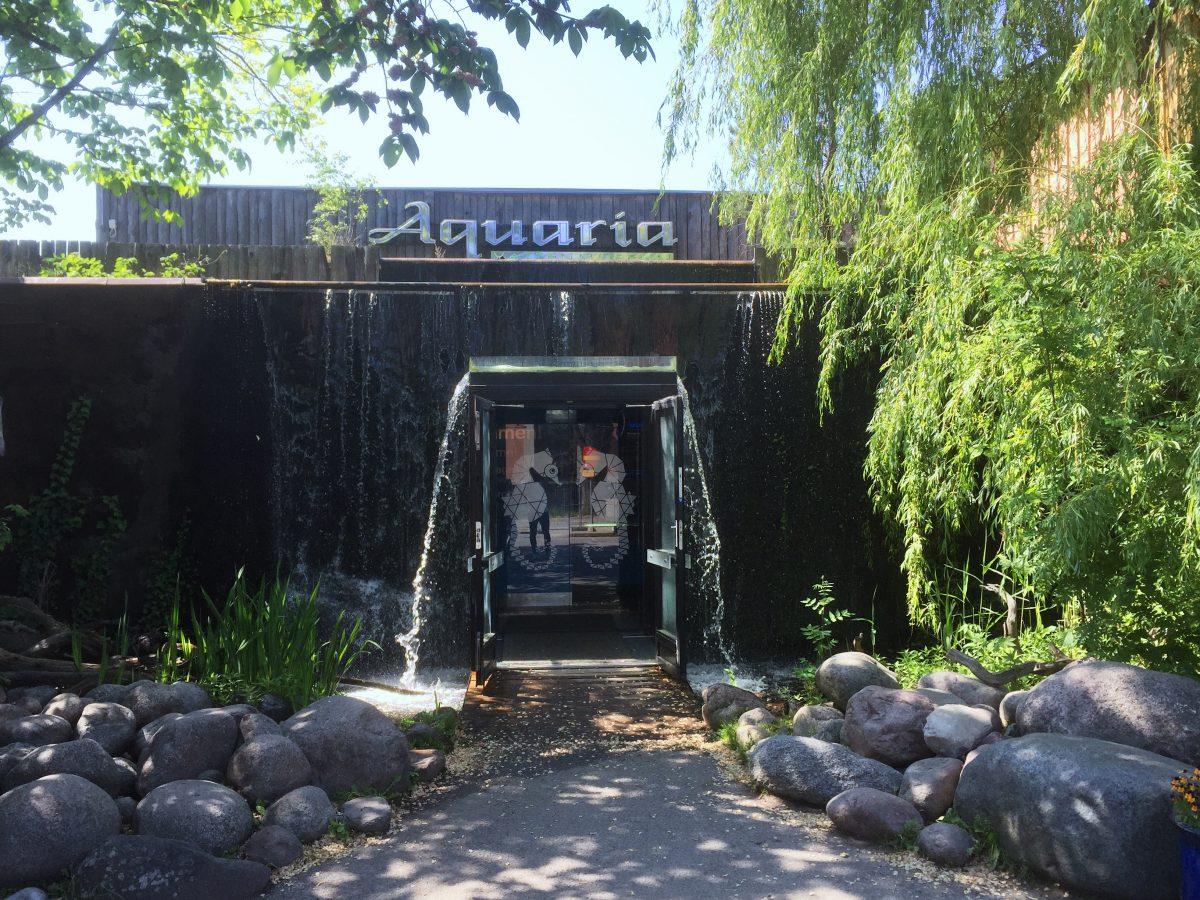 Aquaria el museo acuático de Estocolmo <br> Foto: Israel Úbeda / sweetsweden.com