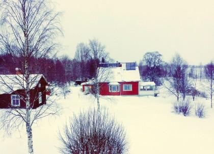 Invierno en la Laponia Sueca foto: Israel Úbeda