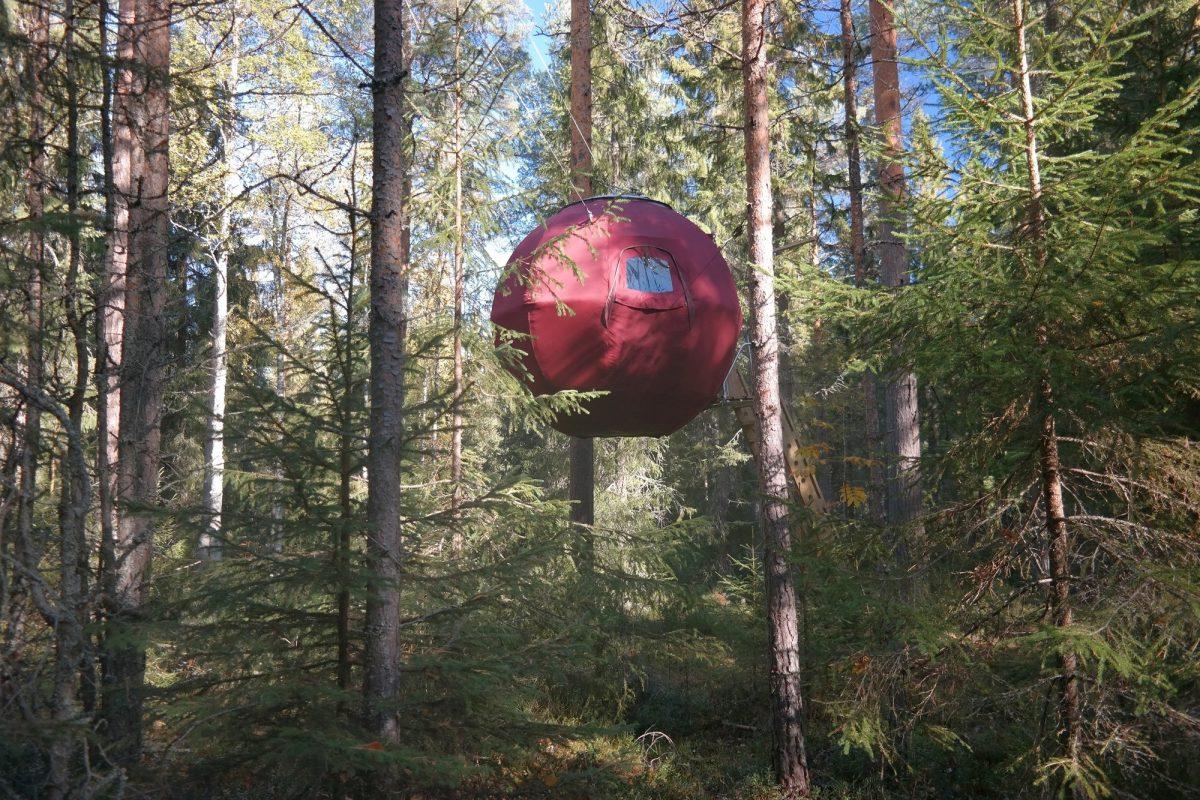 Näsets Marcusgård Supermåne. una cabaña en los árboles de Dalarna, Suecia <br> Foto: nasets-marcusgard.se