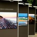Imágenes de diferentes Parques Nacionales en Suecia Foto: Israel Úbeda / sweetsweden.com