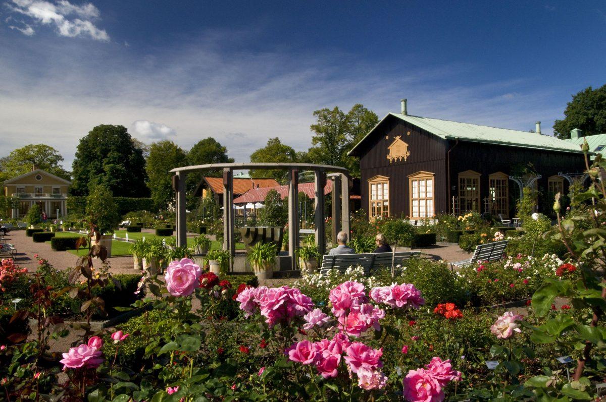 Trädgårdsförening un vivero de flores y plantas en Gotemburgo <br> Foto: Kjell Holmner / Göteborg & Co
