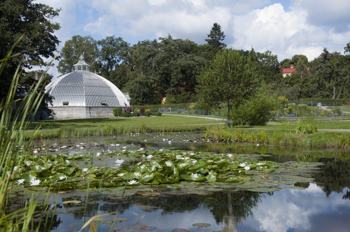 La casa Victoria en Bergianska trädgården <br> Foto: Eva Dalin