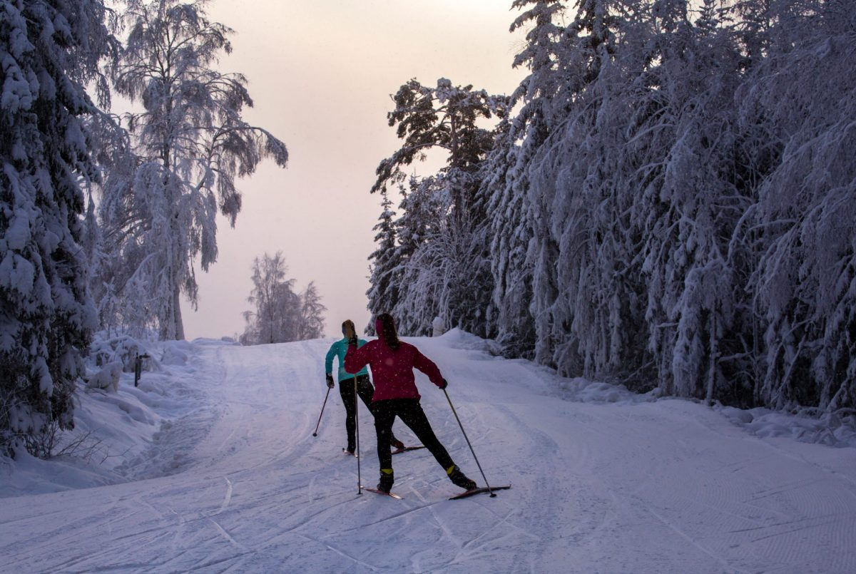 Esquí cross country en Ulricehamn, Suecia <br> Foto: Roger Borgelid