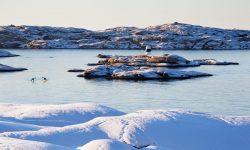 Paisaje de la costa oeste de Suecia en invierno Foto: Roger Borgelid