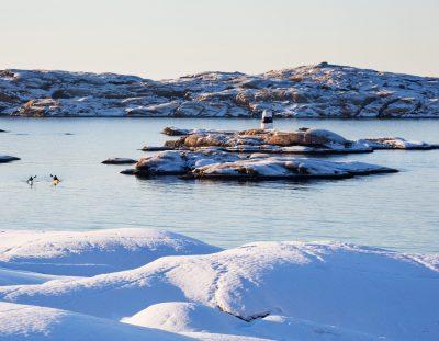 Viel Spaß im Urlaub in Schweden mit diesen 10 Winteraktivitäten
