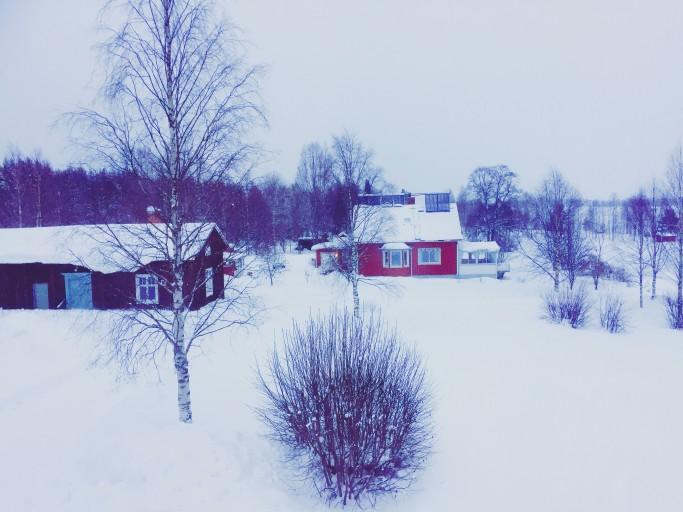 Vista desde Lantliv Lodge - Foto: Israel Úbeda / sweetsweden.com