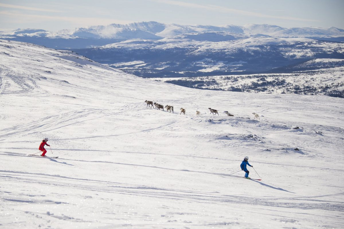 Esquiando en Åre <br> Foto: Ola Matsson / Skistar