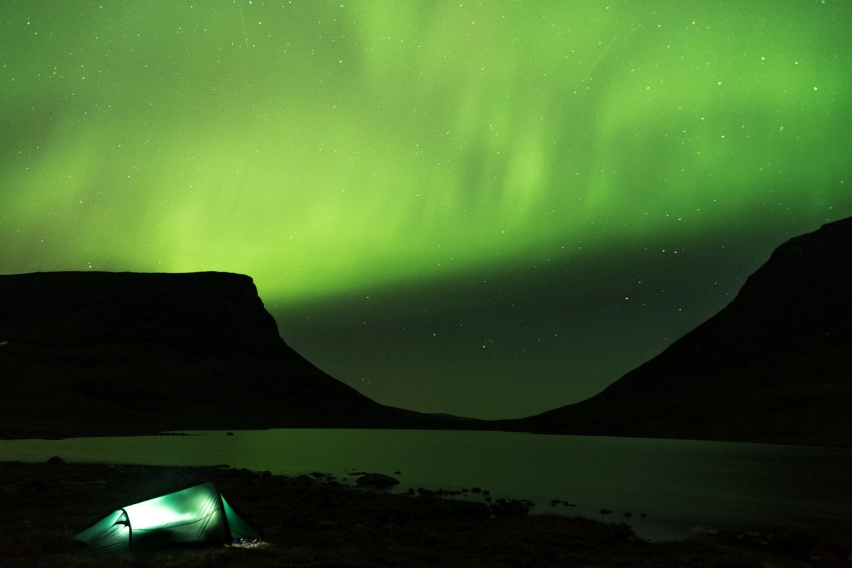 Auroras en Laponia Foto: Hjalmar Andersson / imagebank.sweden.se