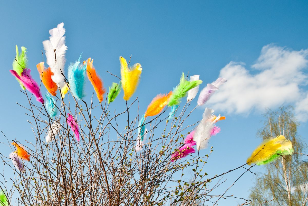 Feathers decorating branches and twigs during Easter in Sweden <br /> Photo: Lola Akinmade Åkerström / imagebank.sweden.se