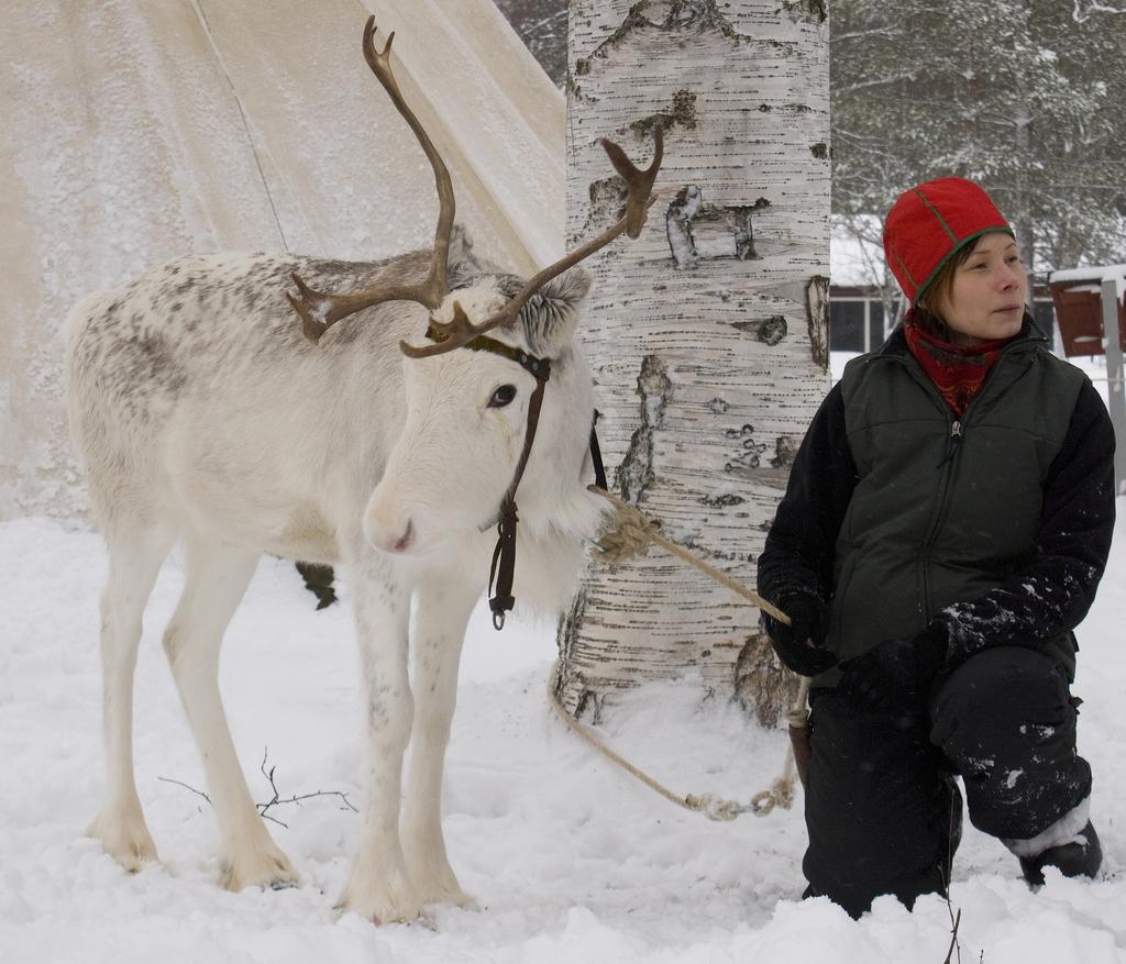 La semana sami de 2009 <br> Foto: Anders Björkman/Vbm