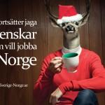 Seguimos a la caza de suecos que quieran trabajar en Noruega, foto: sverige-norge.se