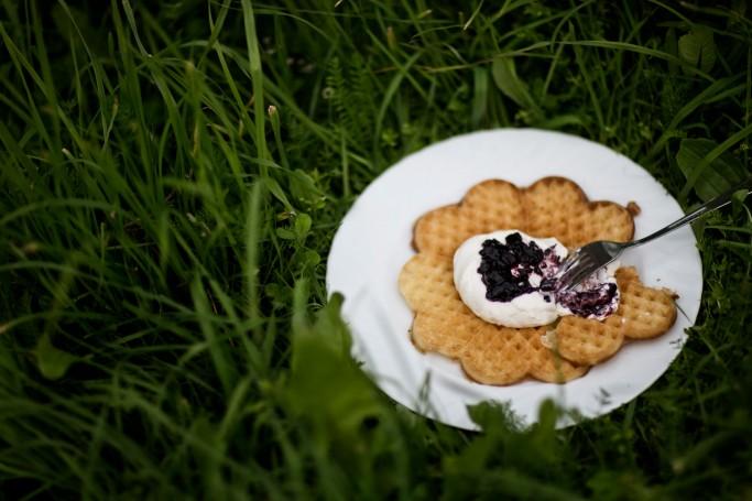 Gofres en Suecia - Foto: Tina Stafrén / imagebank.sweden.se