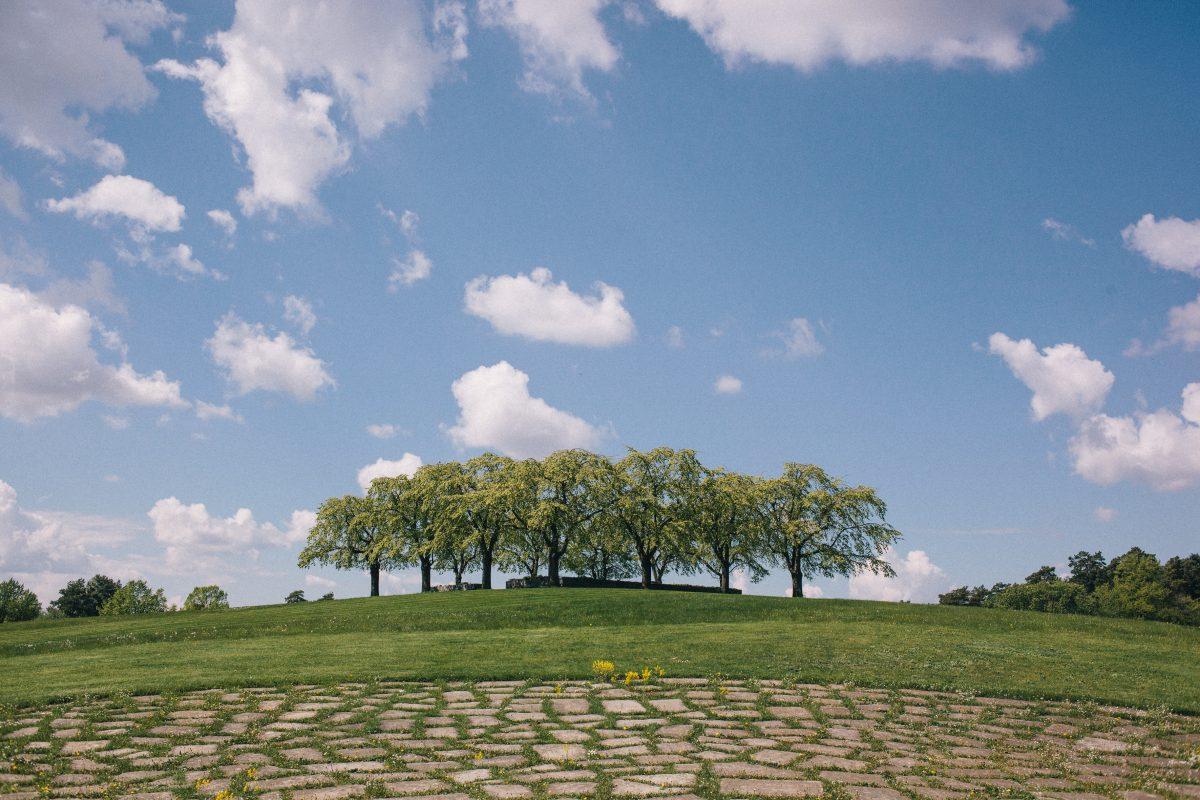 Paisajes del cementerio del bosque <br> Mikael Almehag/Stadsmuseet 2014