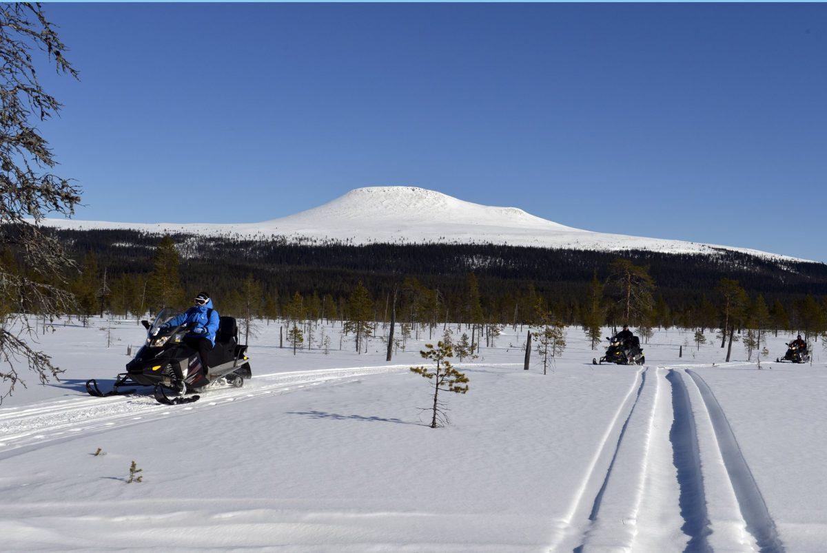 Excursión en moto de nieve en Idre, Dalarna <br> Foto: Nisse Schmidt