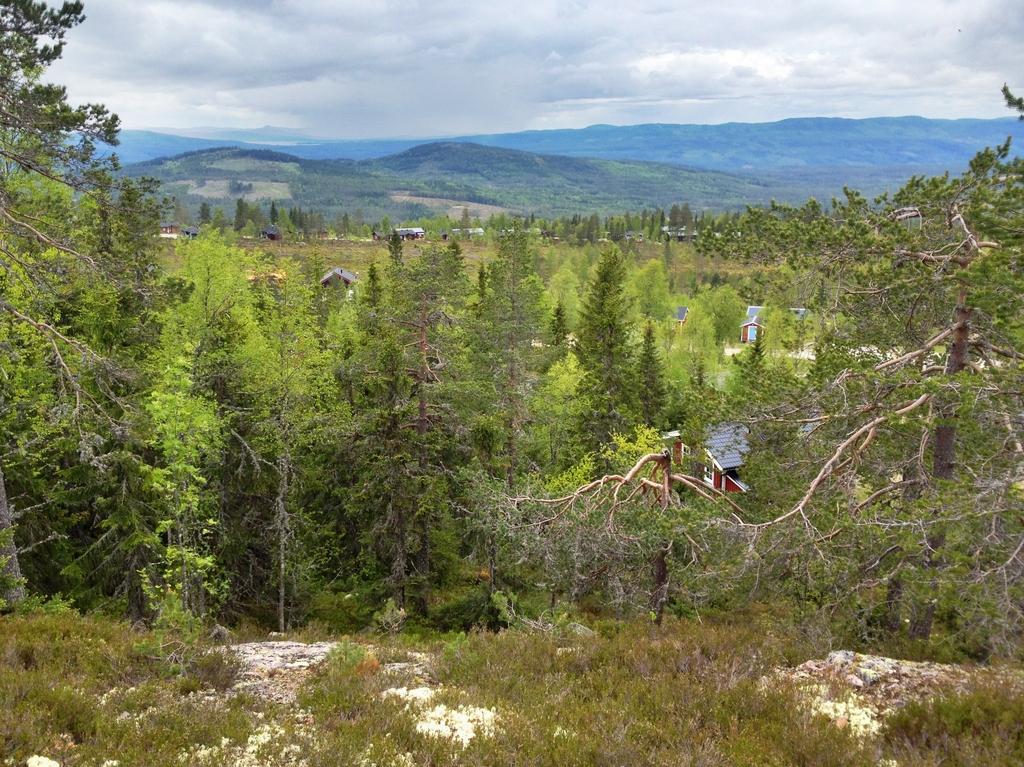 Panorámica de las montañas de Värmland en HDR <br> Foto: Israel Úbeda