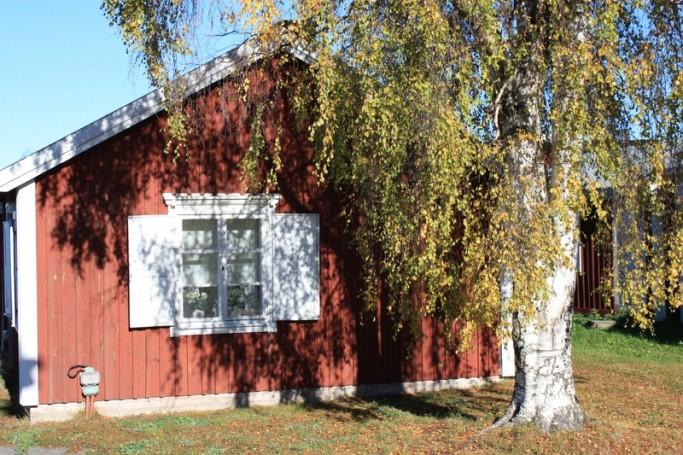 Casa y árbol en Gammelstad <br> Foto: Israel Ubeda / sweetsweden.com