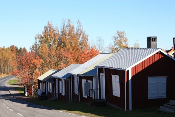 Casas y árboles en otoño en Gammelstad <br> Foto: Israel Ubeda / sweetsweden.com