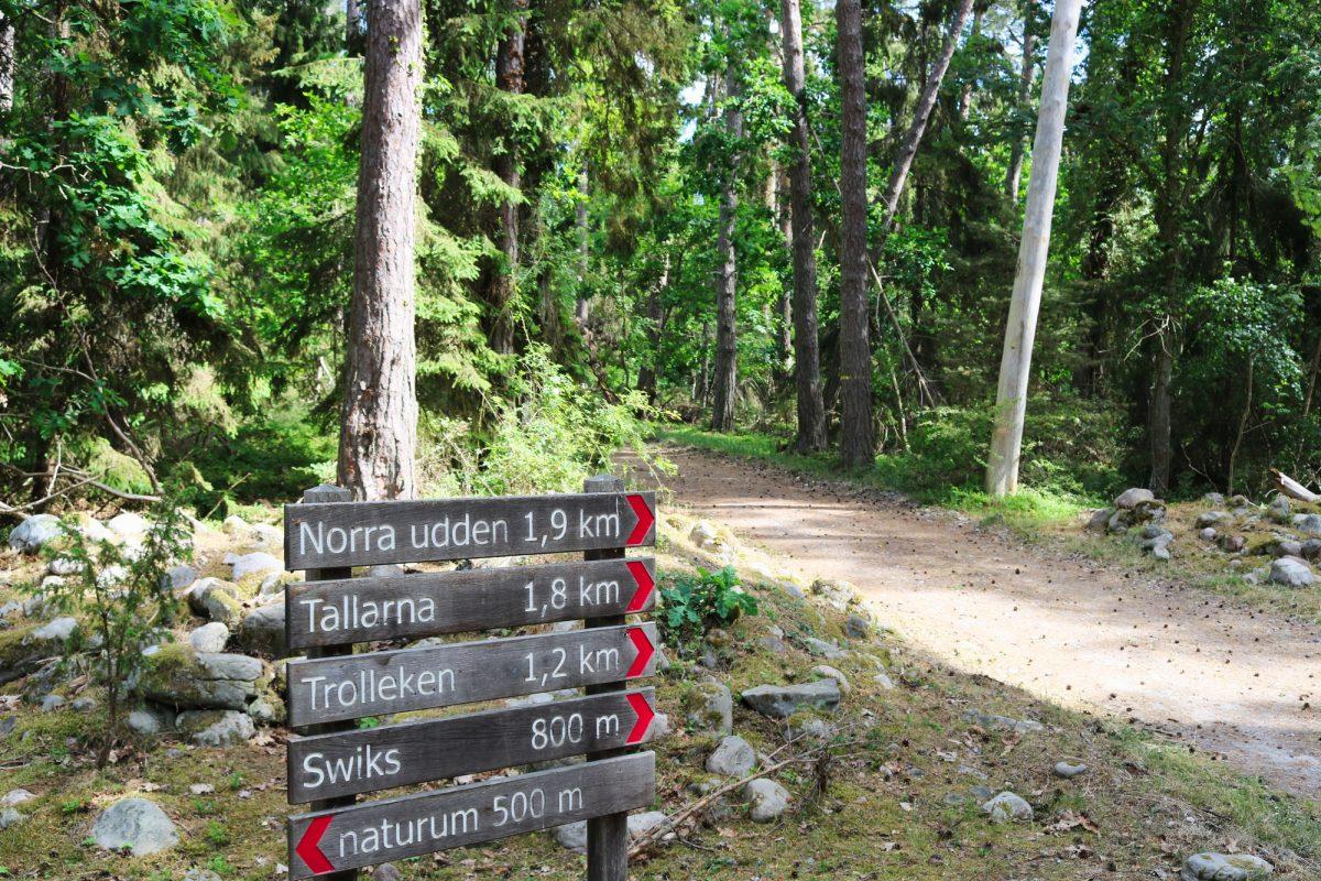 Trollskogen, el bosque mágico en Öland <br> Foto: Israel Úbeda / sweetsweden.com
