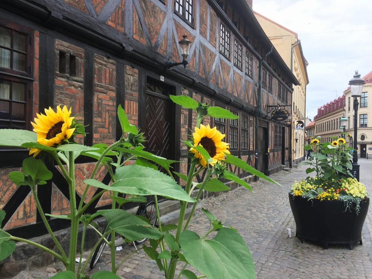 Lilla Torg en Malmö en verano <br> Foto: Israel Úbeda / sweetsweden.com