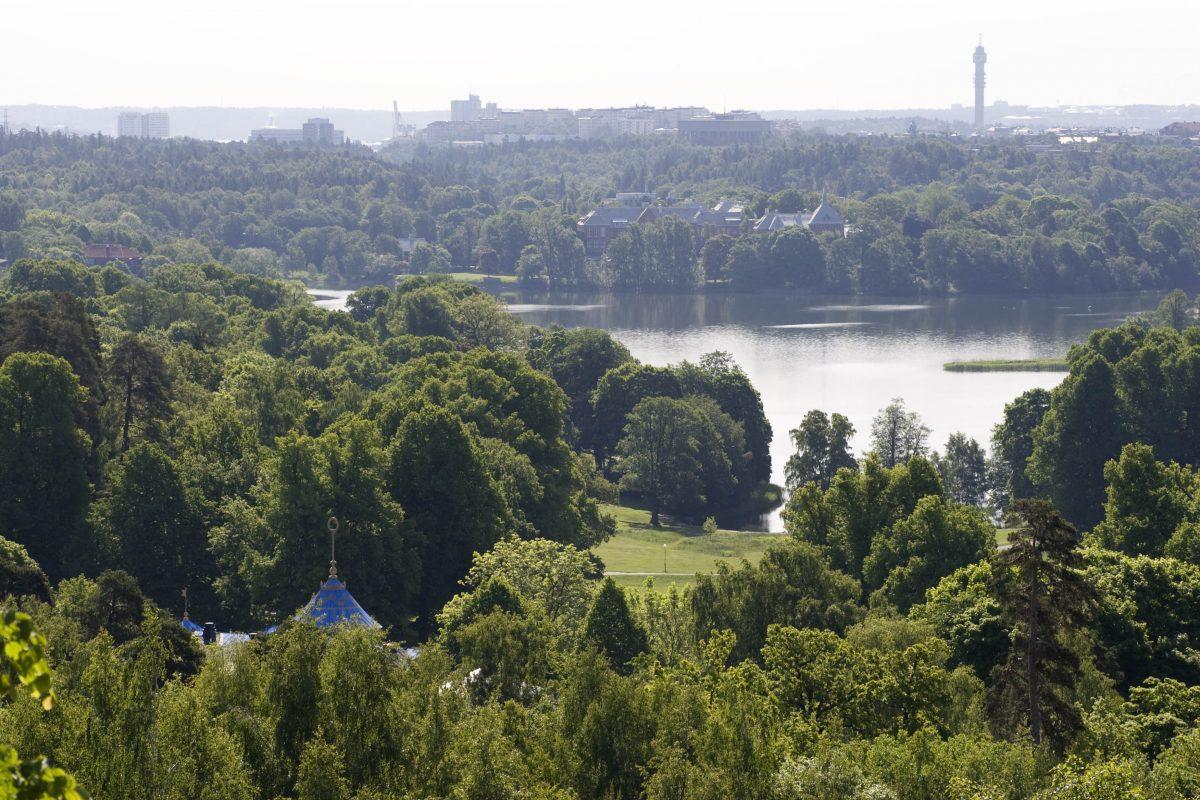 El parque de Haga desde la colina <br> Foto: solna.se