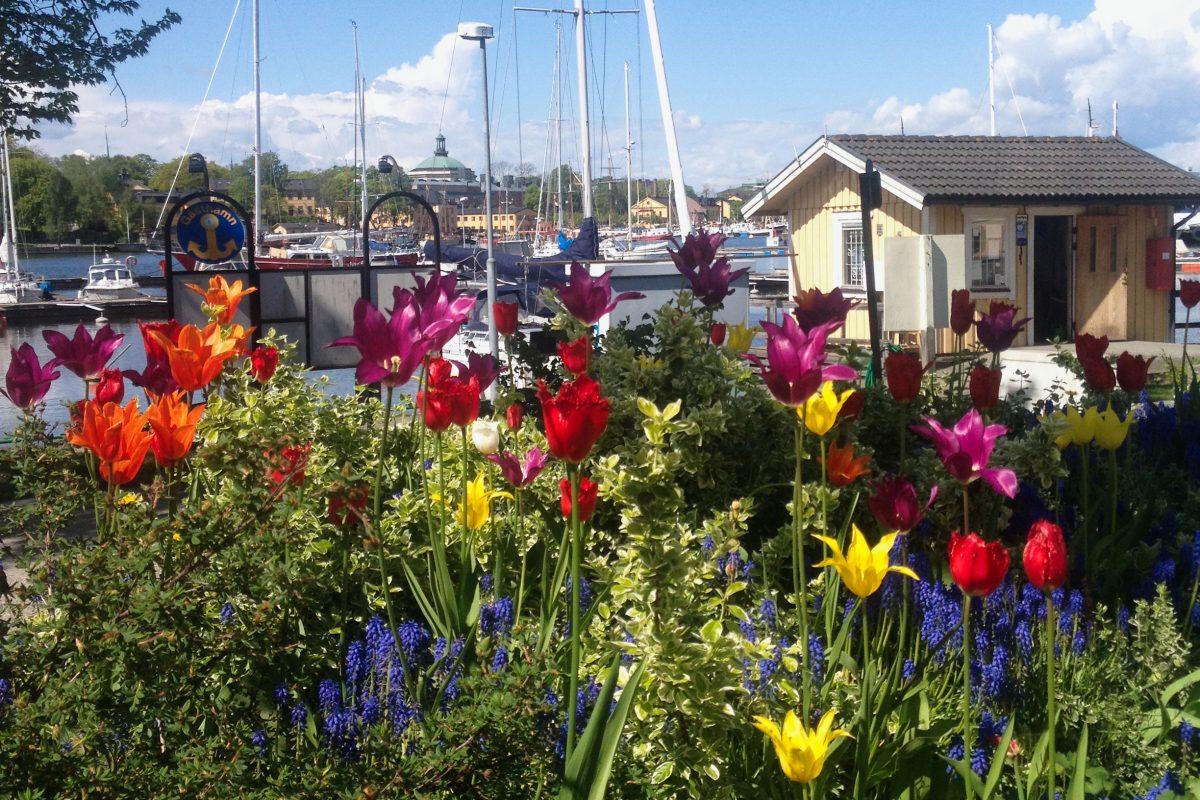 Flores en Djurgården en Estocolmo <br> Foto: Israel Ubeda / sweetsweden.com
