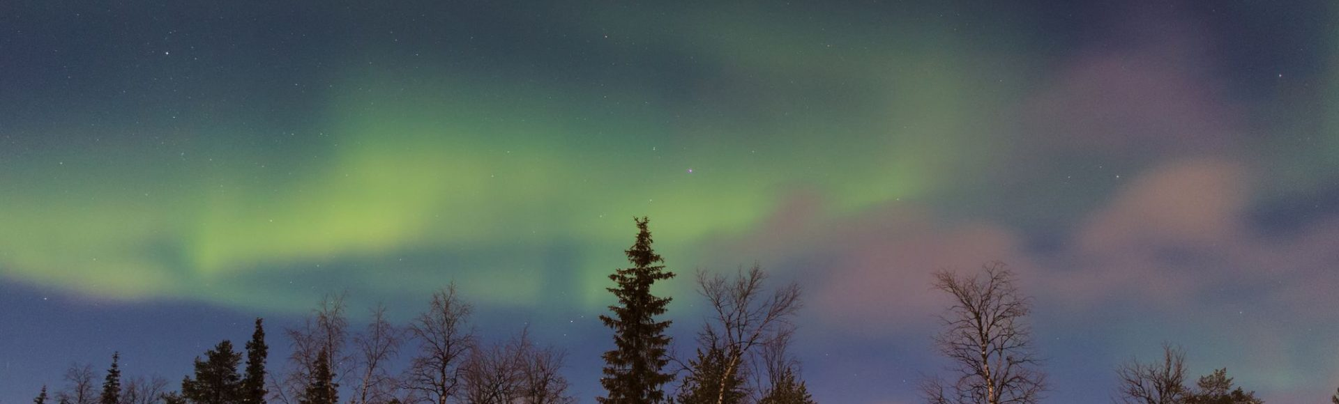 Offer: The Northern Lights Trip in Sweden You Can't Miss