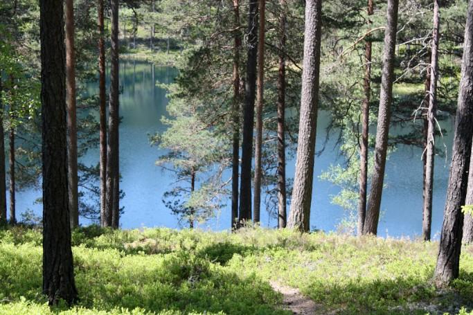 El lago turquesa en Brattfors, Värmland, Suecia, foto: Israel Úbeda