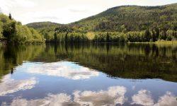 Paisajes del río Klara en Värmland, Suecia, foto: Israel Úbeda