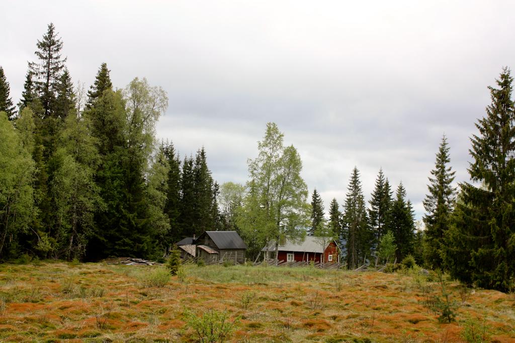El paraje idílico donde más de uno viviría en Långberget, Värmland, Suecia <br> Foto: Israel Úbeda
