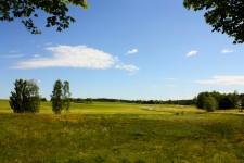 Los prados y bosques de Småland en primavera, foto: Israel Úbeda