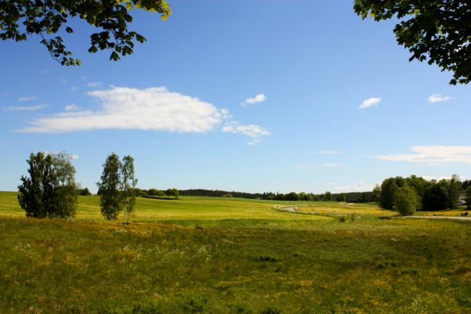 Los prados y bosques de Småland en primavera <br> Foto: Israel Úbeda / sweetsweden.com