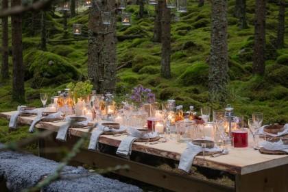 Sweden The Edible Country, mesas listas para disfrutar la comida y la naturaleza de Suecia Foto: August Dellert