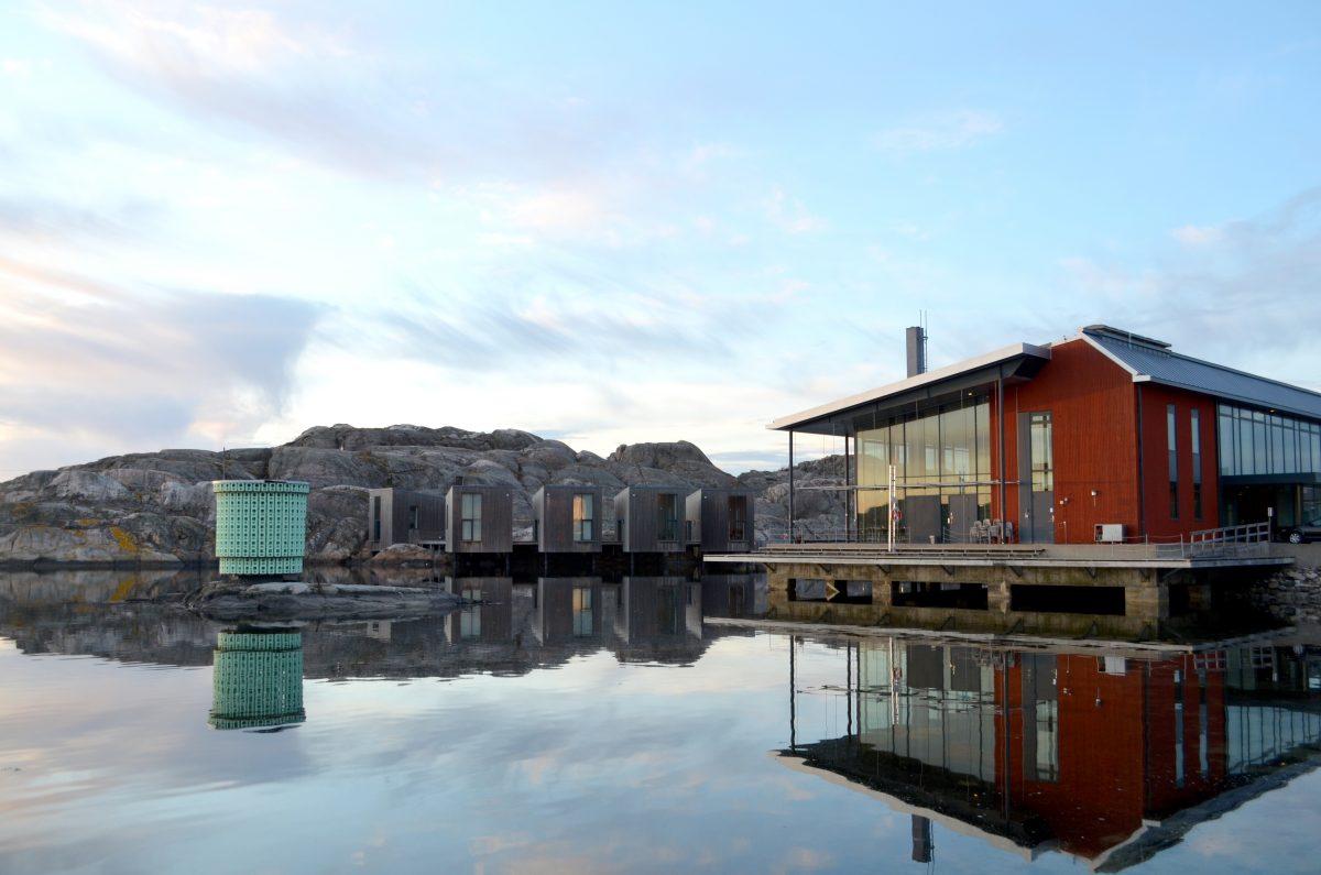 El Museo nórdico de acuarelas <br> Foto: Anders Arena