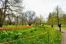 Paseos ecológicos por Lund, Escania - Foto: Aline Lessner / imagebank.sweden.se