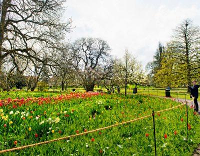 Rutas de verdadero turismo ecológico en Lund