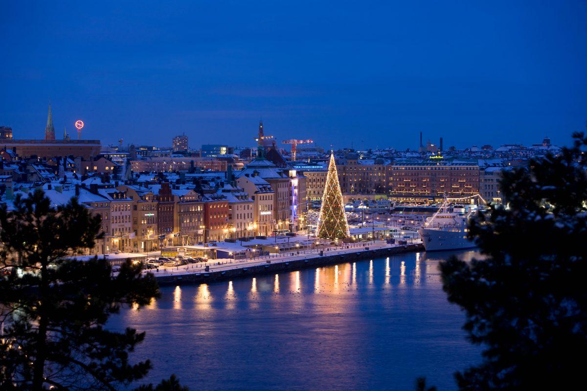 Árbol de Navidad en Estocolmo <br> Foto: Henrik Trygg / imagebank.sweden.se