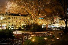 Luces de Navidad en la plaza Gustav Adolf de Malmö - Foto: Miriam Preis/imagebank.sweden.se